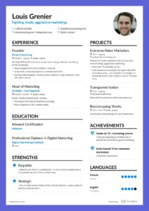 Enhancv What Successful Marketing Resume Examples Have in Common marketing resume
