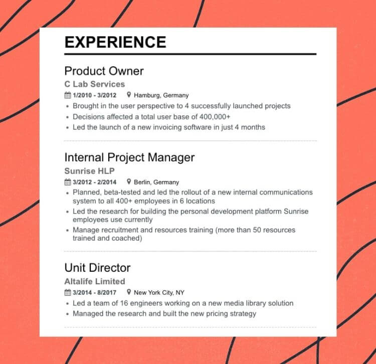 Enhancv What to Put On A Resume: Everything You Need to Include