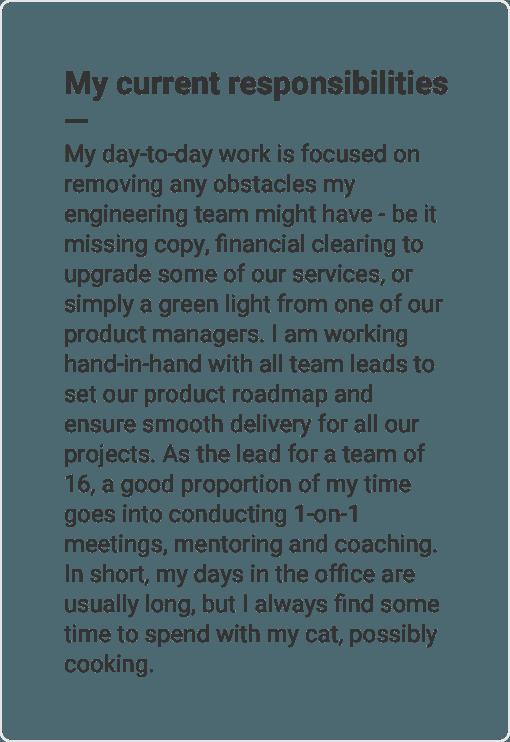 enhancv professional resume cv builder