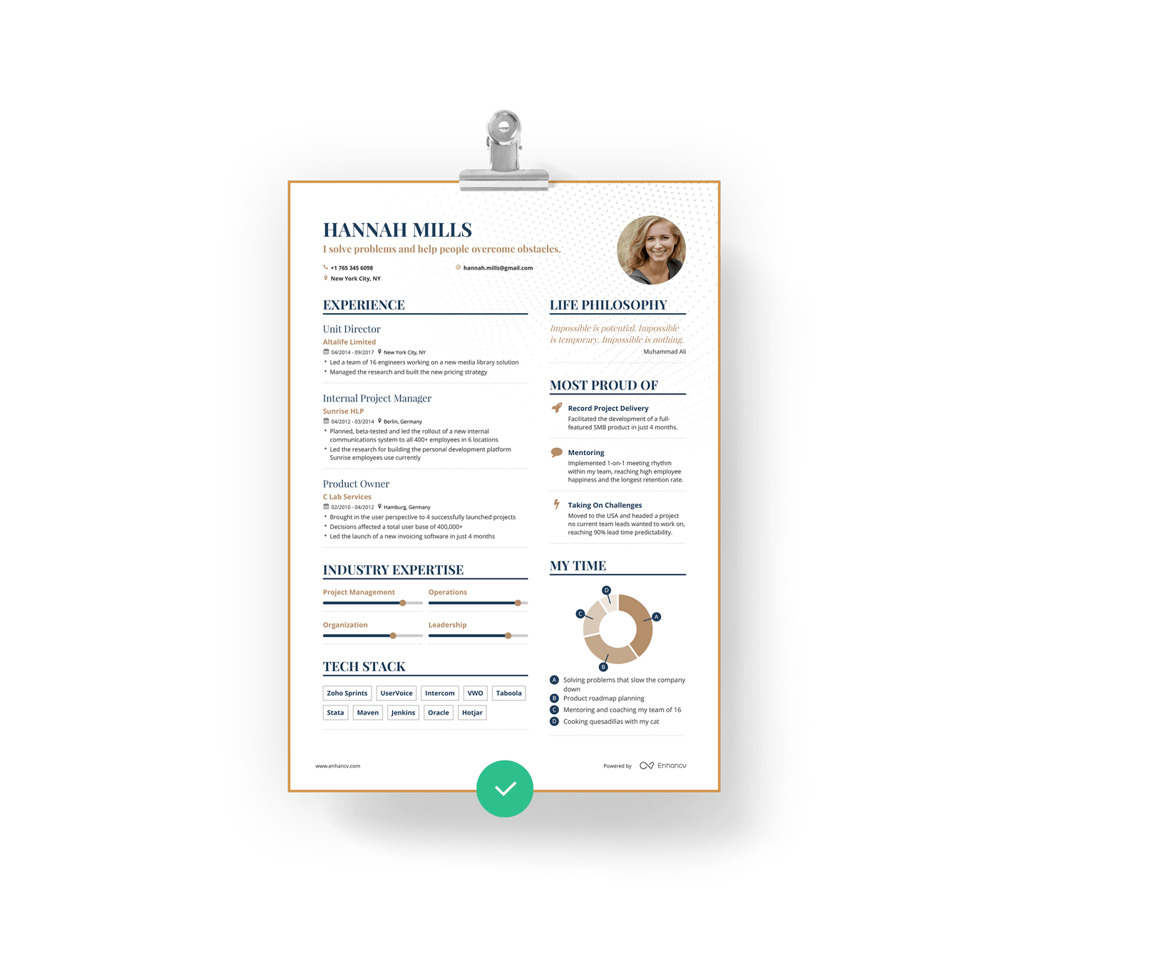 enhancv professional resume cv builder