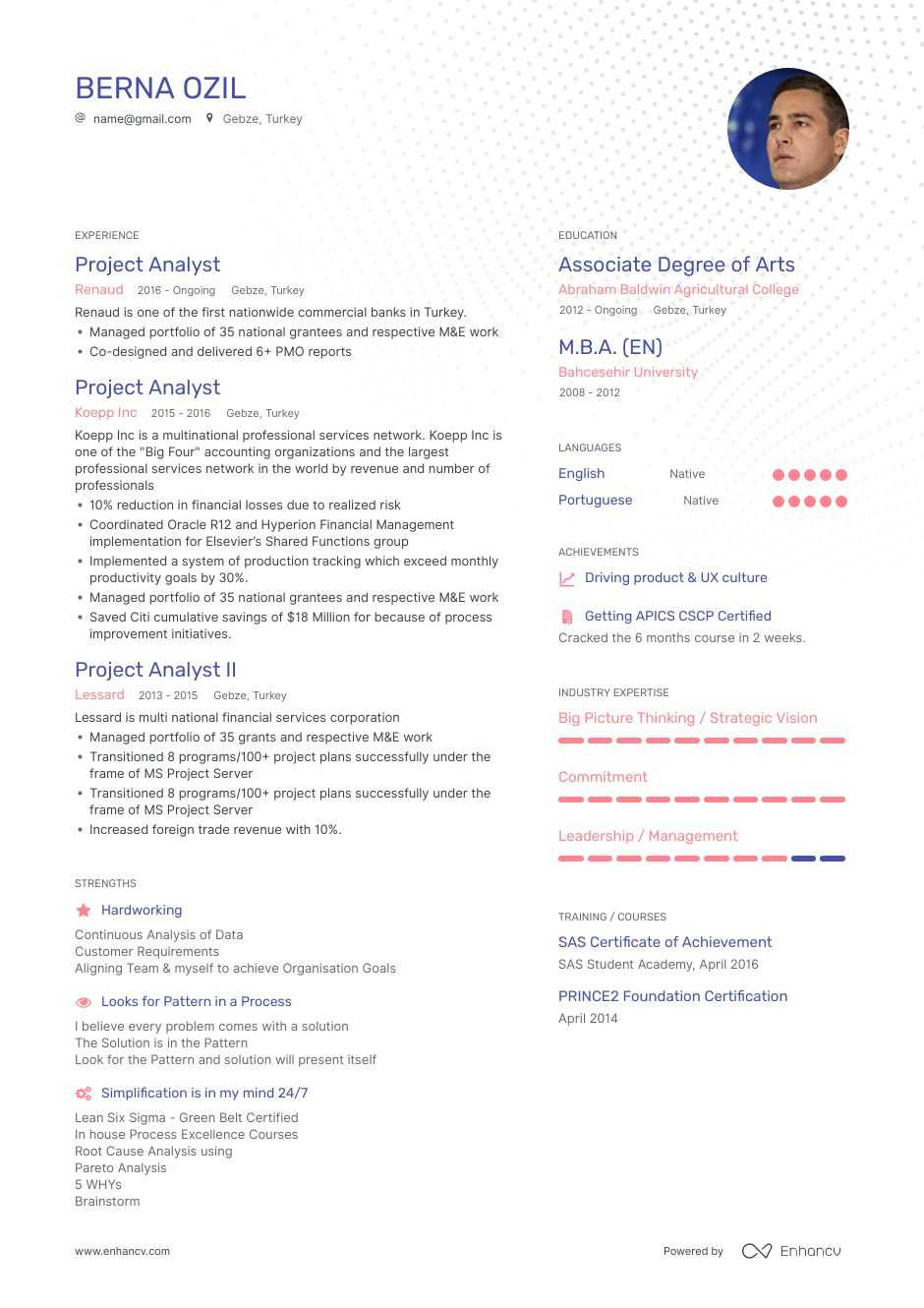 project analyst resume example