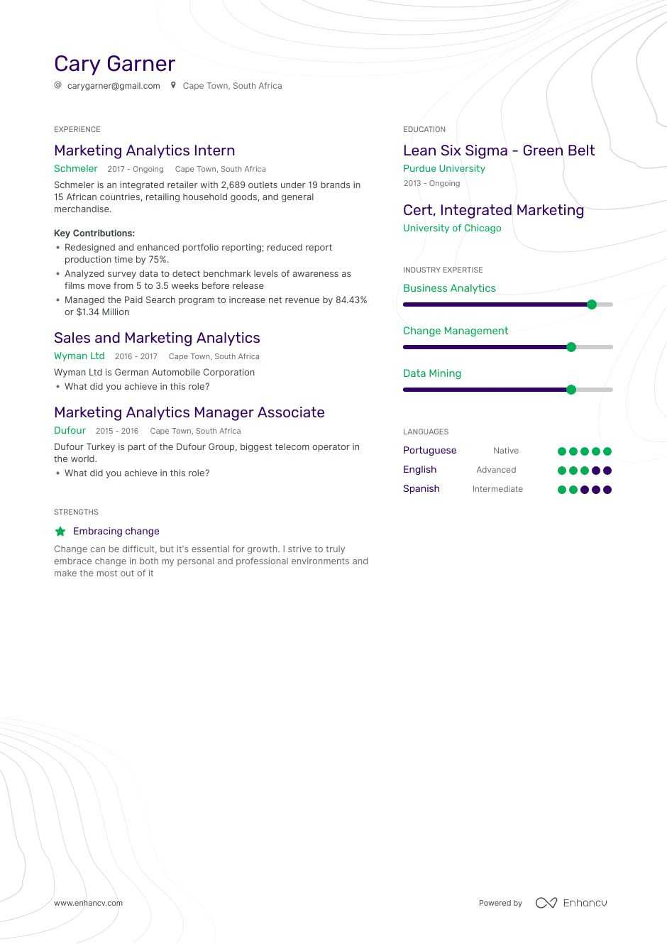 marketing analytics resume example