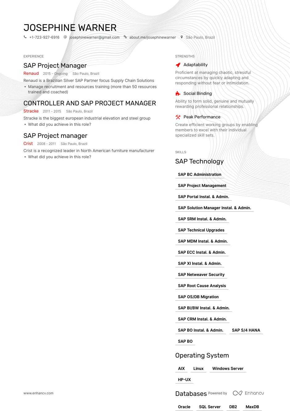 sap project manager resume example