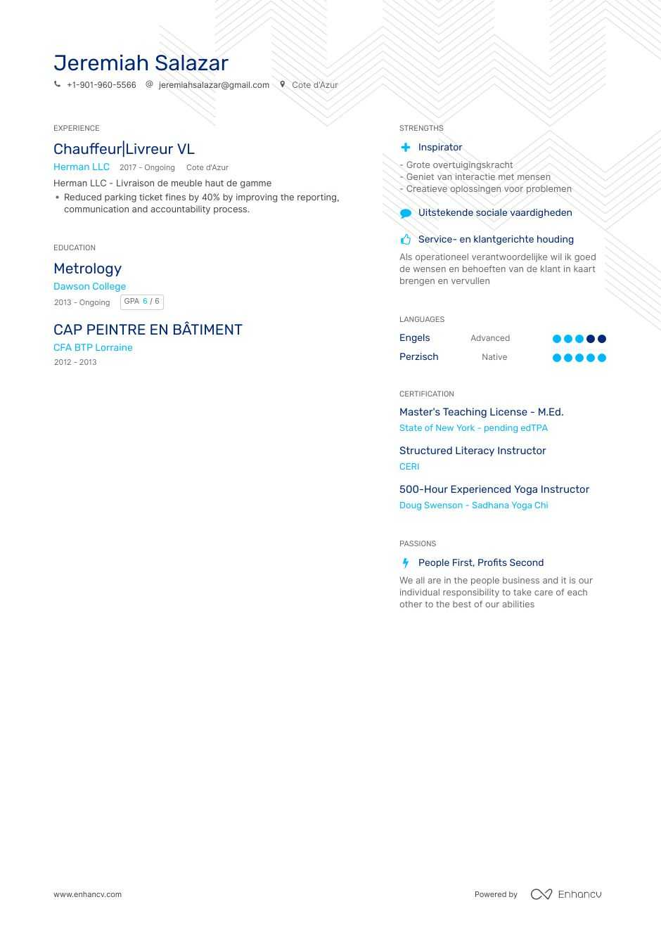 chauffeur resume example
