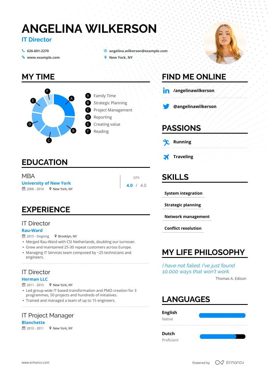 it director resume examples