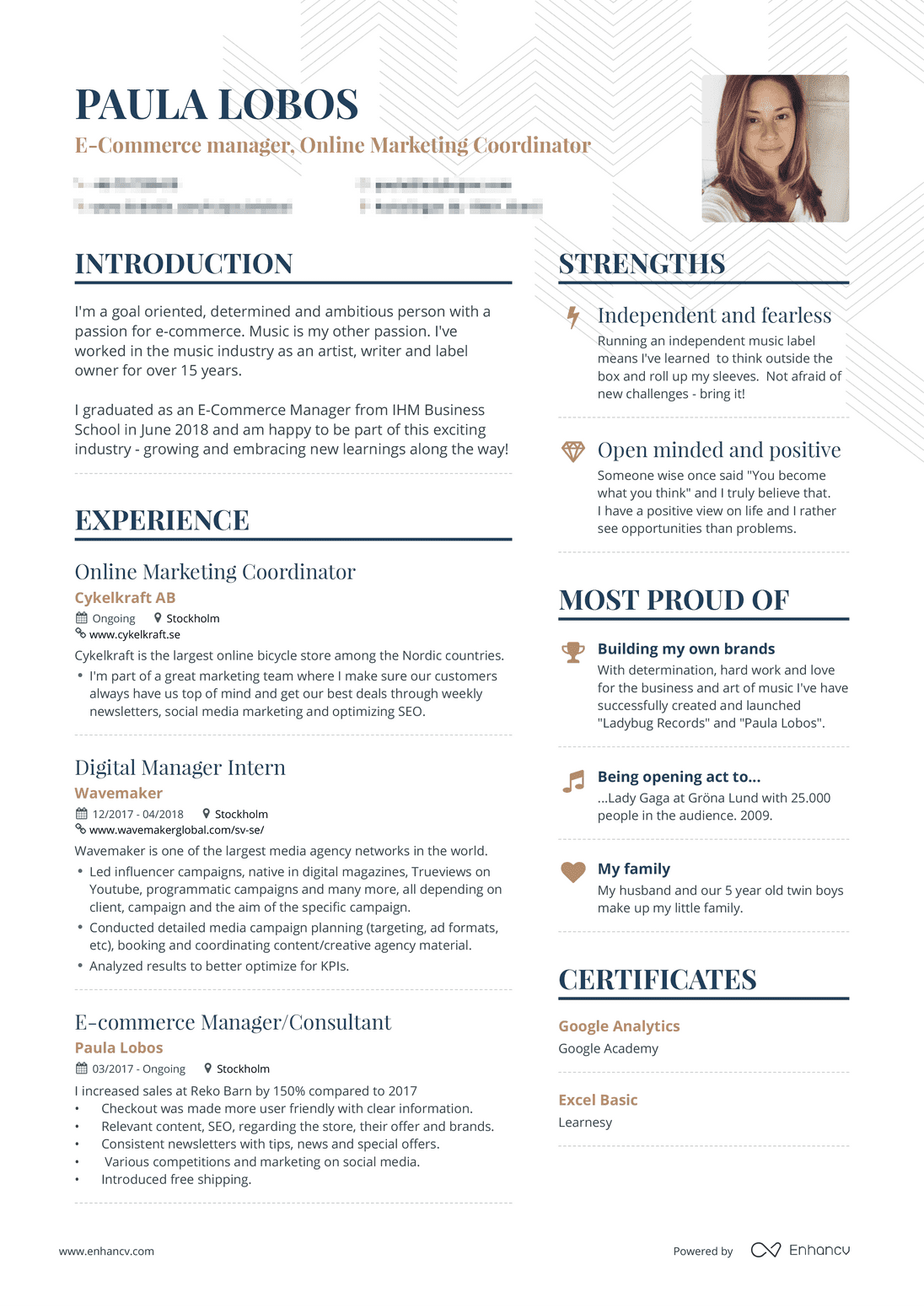 real ecommerce resume example