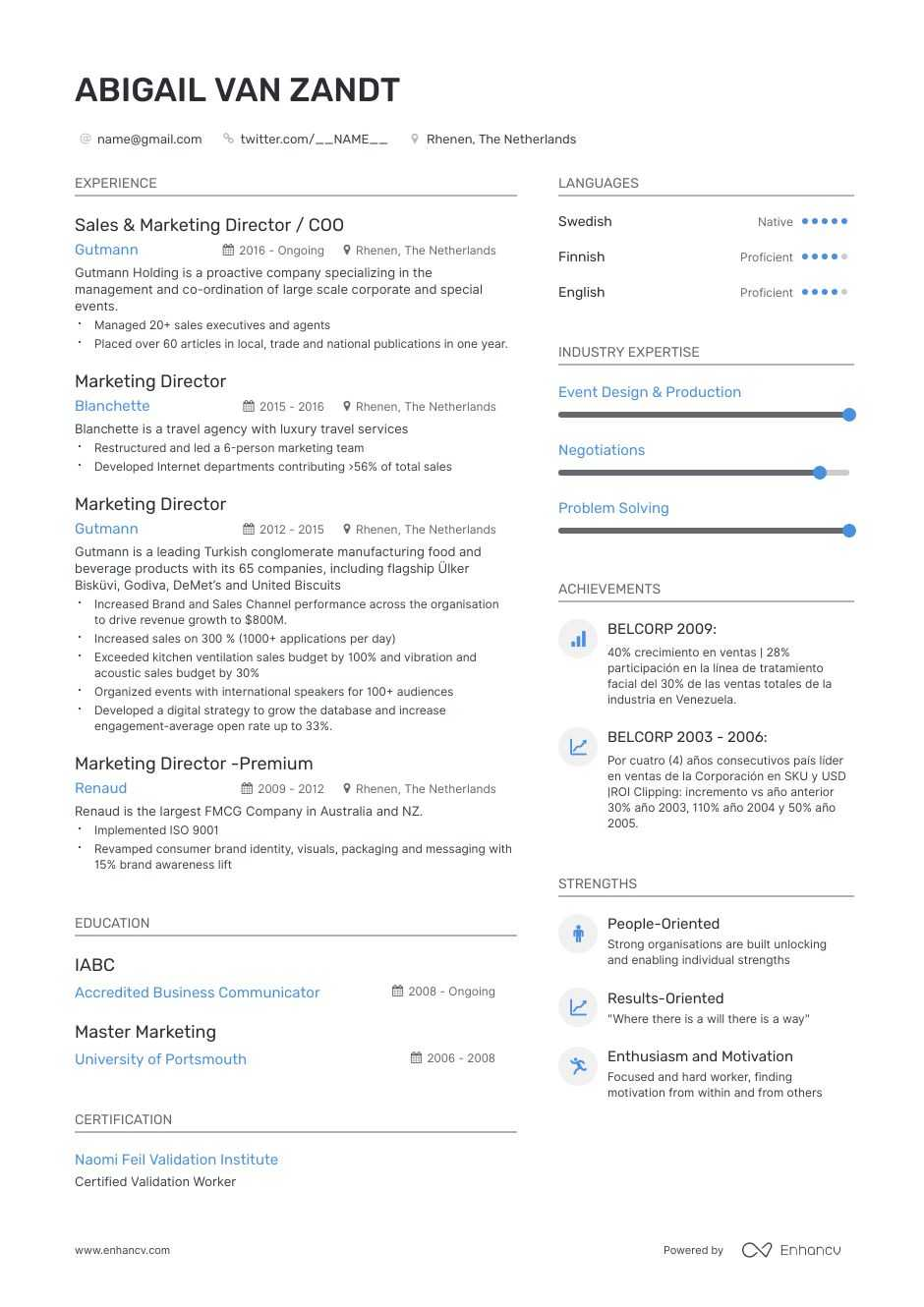 vp of marketing resume example
