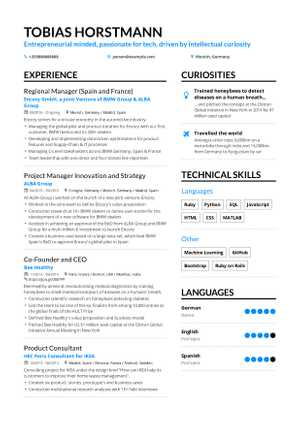 Tobias Horstmann resume preview