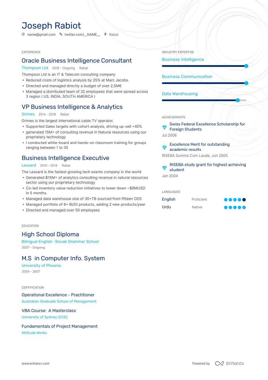 Business Analyst Cv Sample from enhancv.com