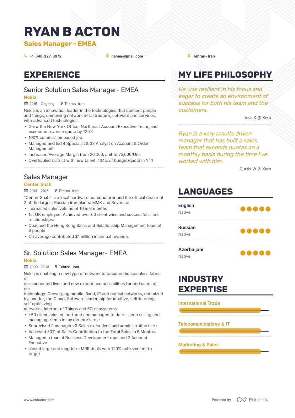 sales manager resume samples and 10  examples