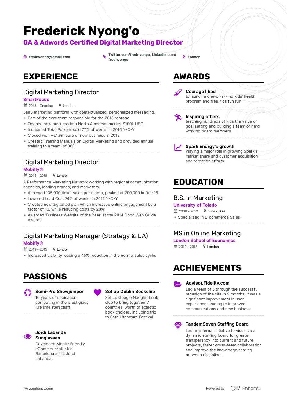 digital marketing director resume example