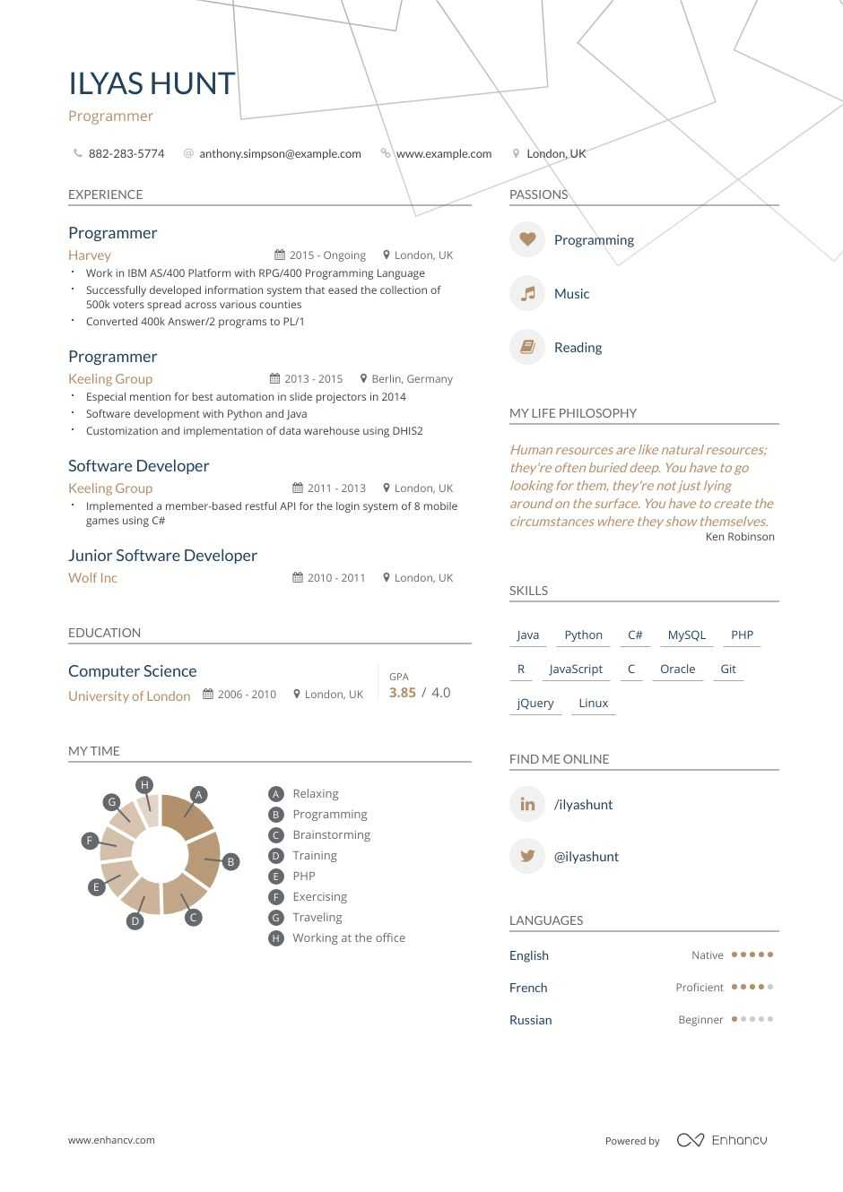 Programmer Resume Examples | Do's and Don'ts for 2020 ...
