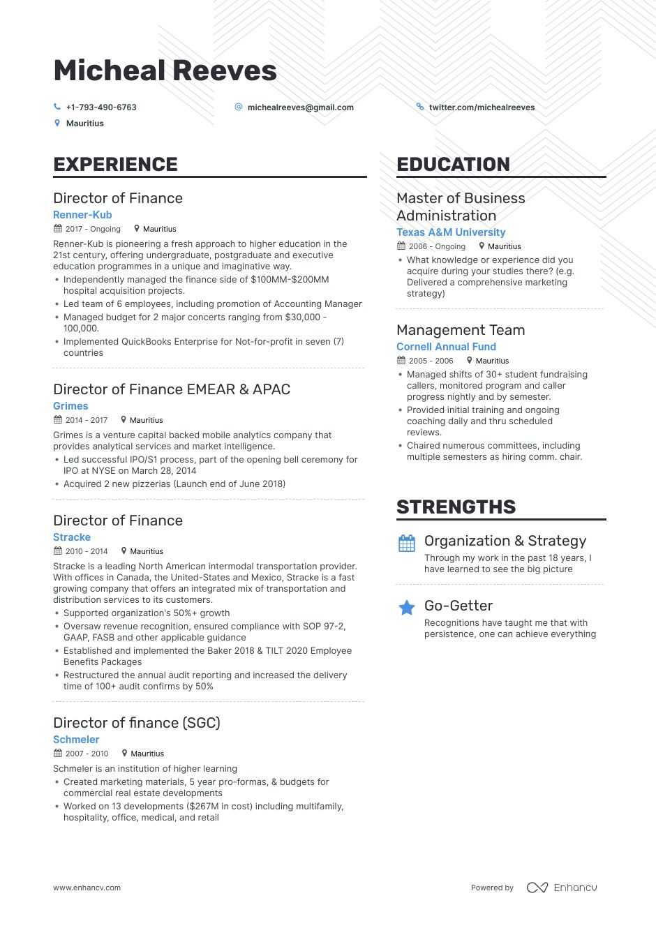Top Director Of Finance Resume Examples Amp Samples For 2020