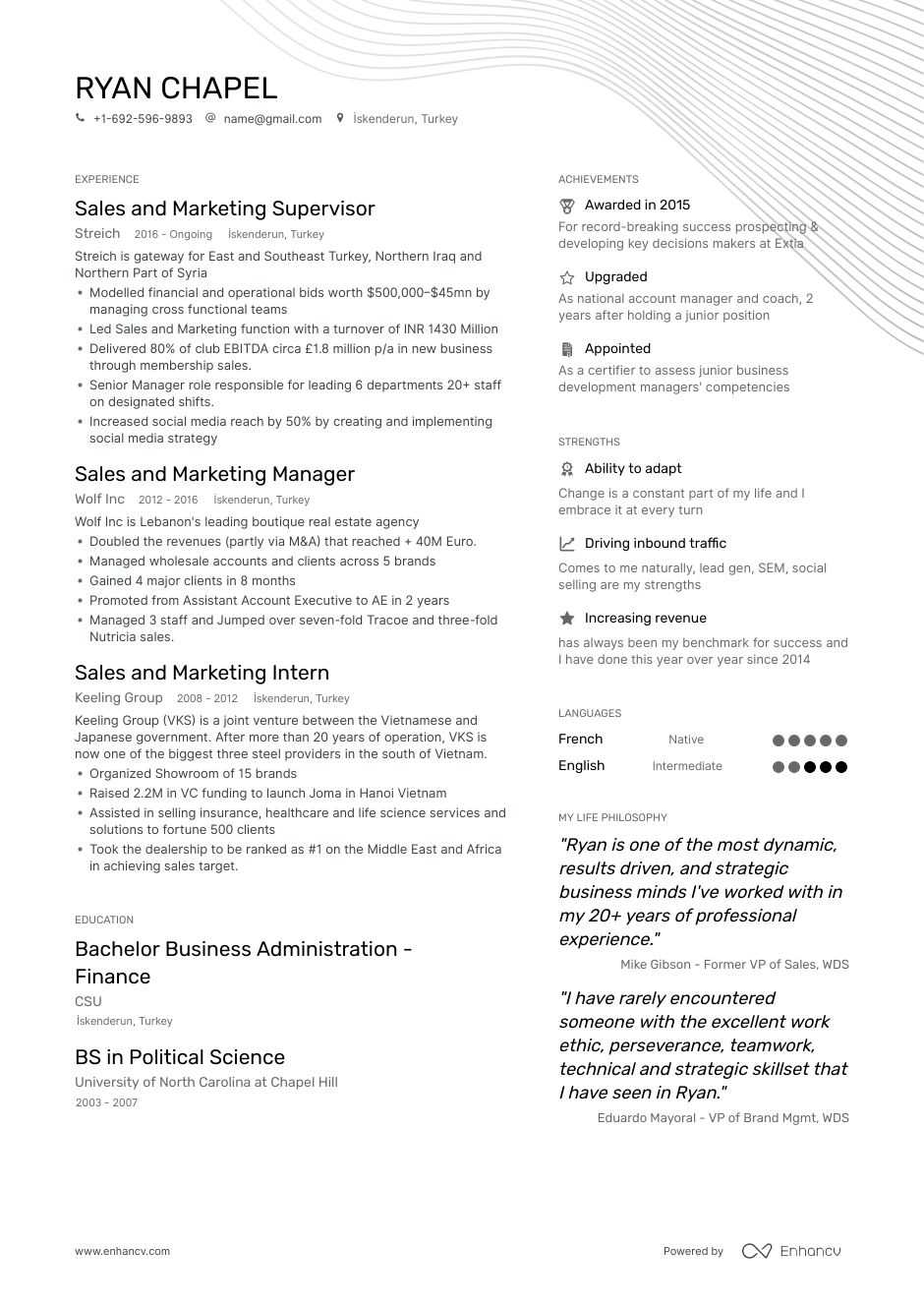 Job Winning Sales And Marketing Professional Resume Examples