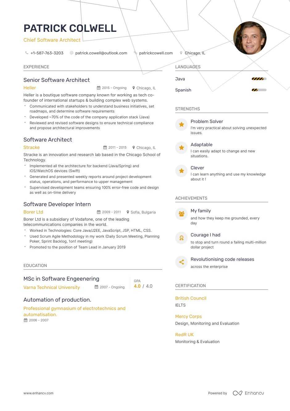 software architect resume example