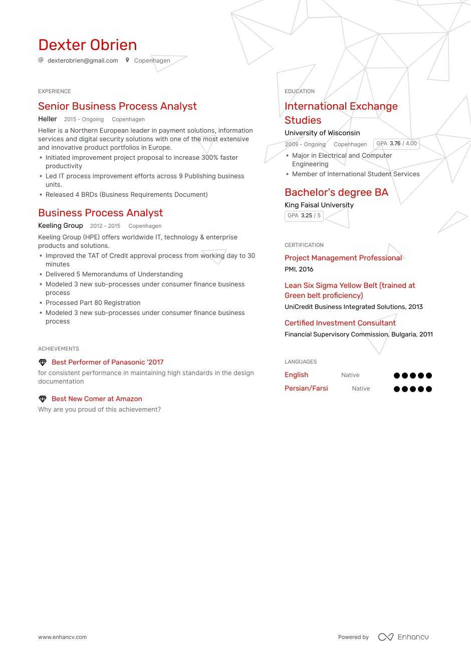 business process analyst resume example