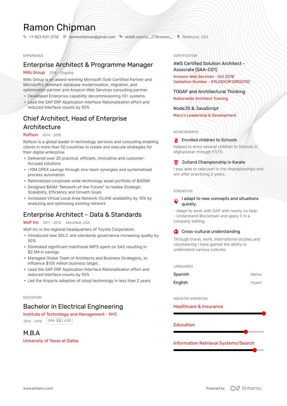 enterprise architect resume example
