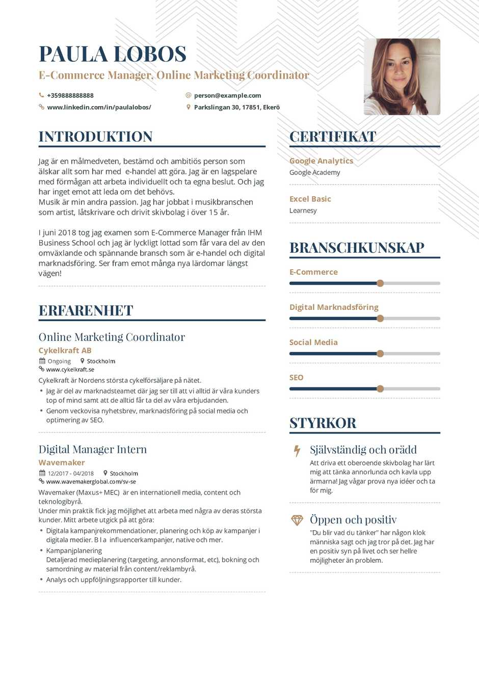 Emerce Marketing Resume Example