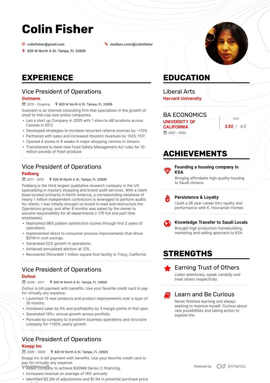 vice president of operations resume example