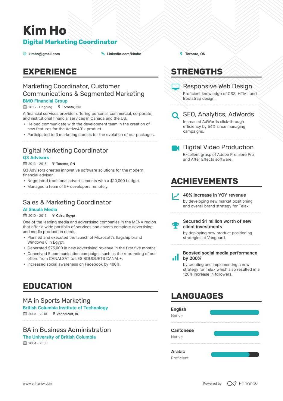 digital marketing coordinator resume example