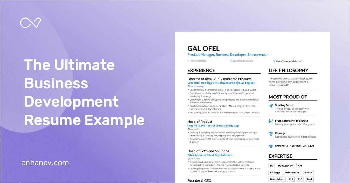 business development resume samples  12  examples