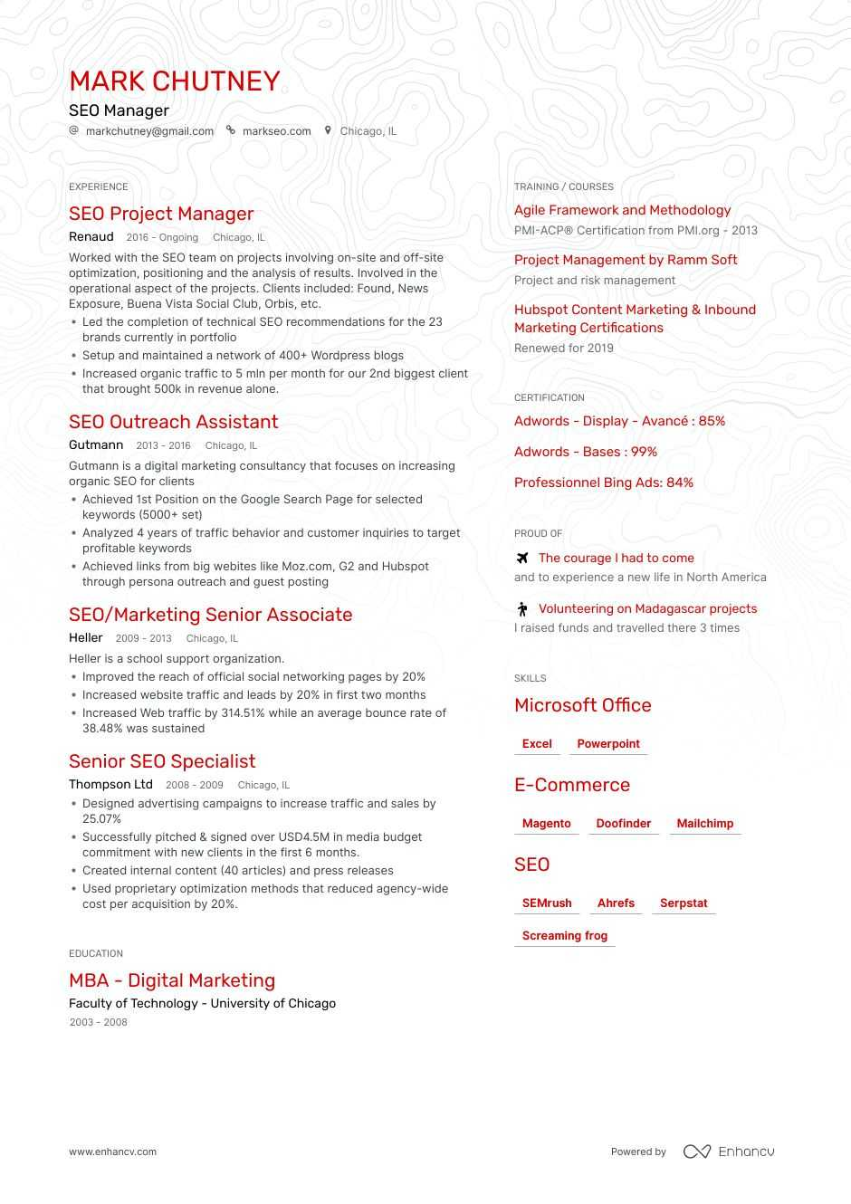 seo manager resume example
