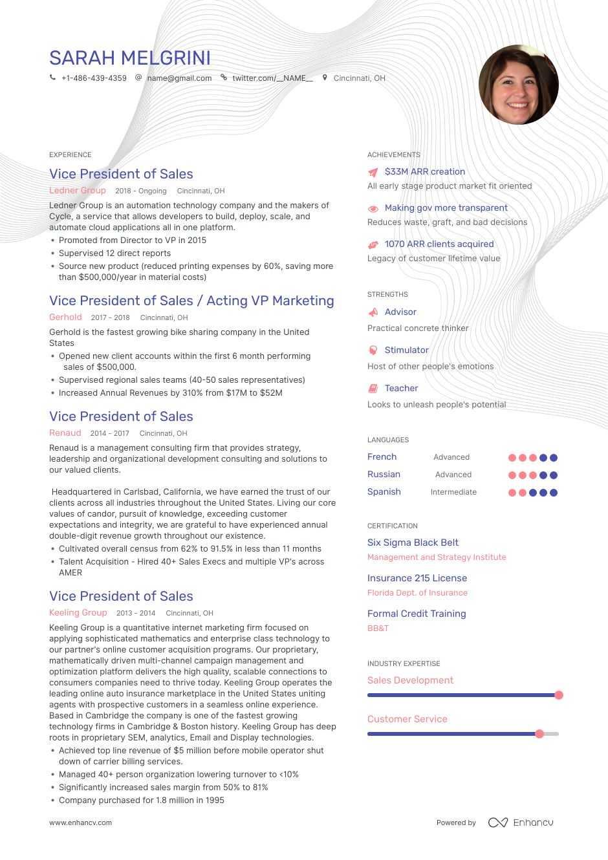 top vp of sales resume examples  u0026 samples for 2020