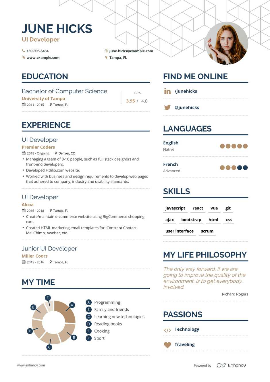 ui developer resume example