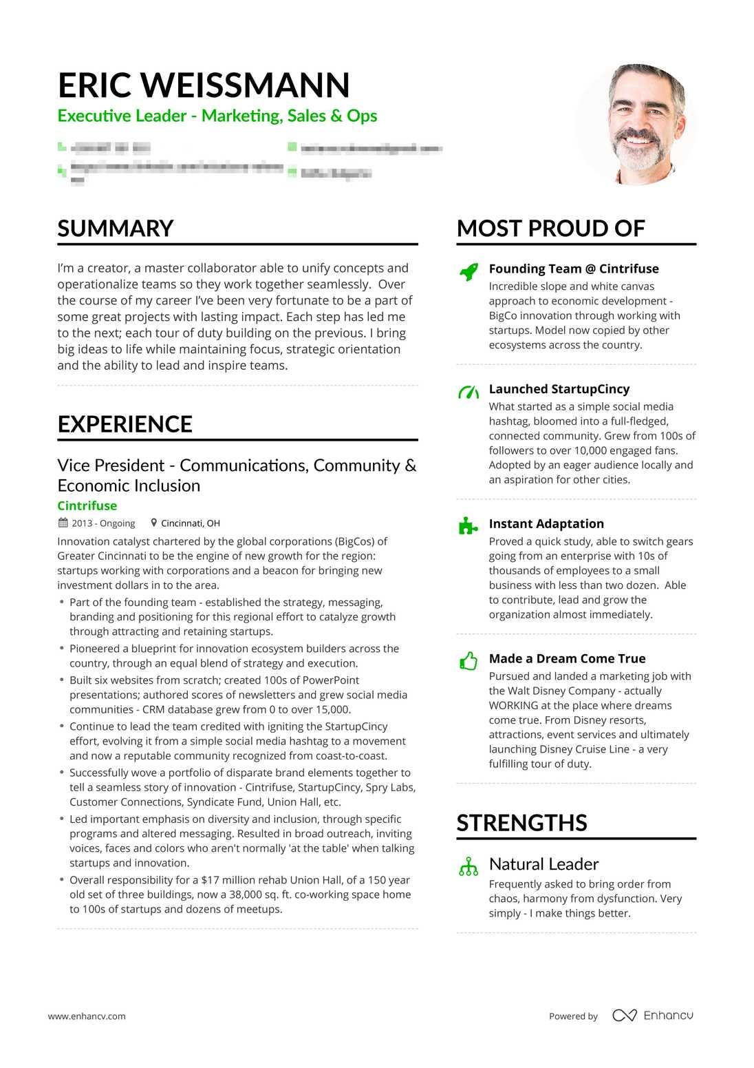 real marketing executive resume example