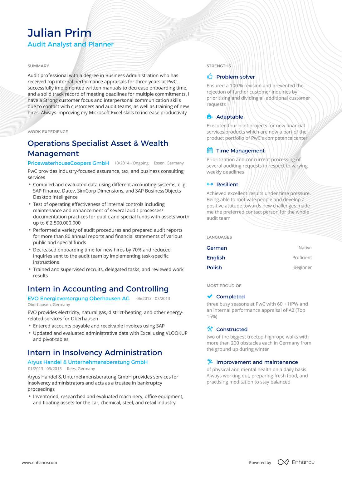 Real Auditor Resume Example Enhancv