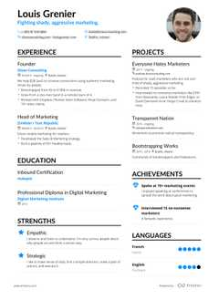 Louis Grenier resume preview